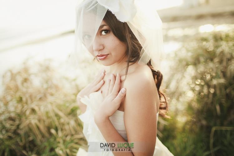 fotografo bodas marbella